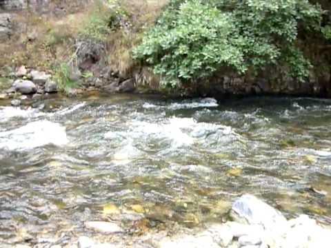 ՖՈՏՈՇԱՐՔ. Սյունիքի մարզի Վարարակ գետը հակասանիտարական վիճակում է