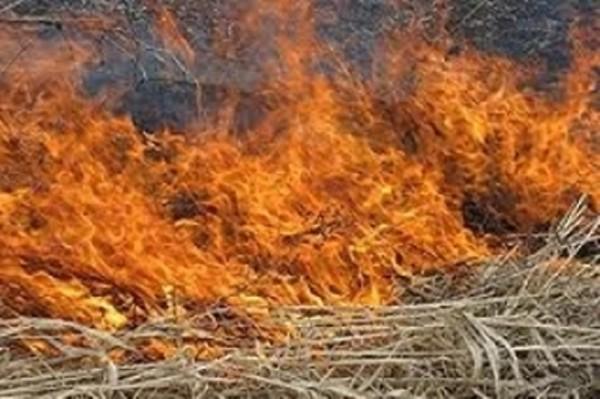 Գեղարքունիքի մարզի Զոլաքար գյուղում 150 հակ անասնակեր է այրվել