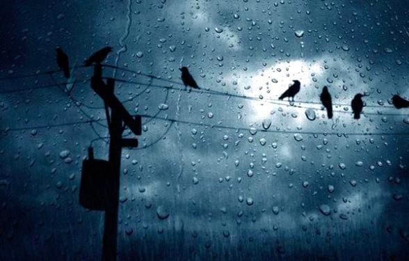 Մինչև երբ կշարունակվեն անձրևները. Եղանակի մասին
