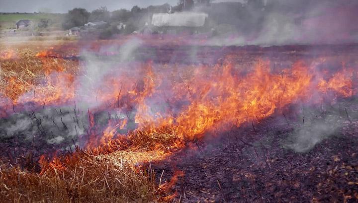 Ջերմոցային տնտեսության մոտակայքում 5 հա խոտածածկույթ է այրվել