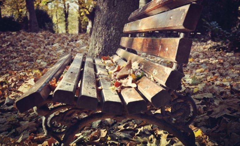Որոշ մարզերում կգրանցվի մինչև -9 աստիճան ցուրտ. եղանակը Հայաստանում