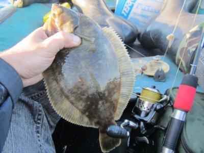 Ձուկը մտել է ձկնորսի բերանը