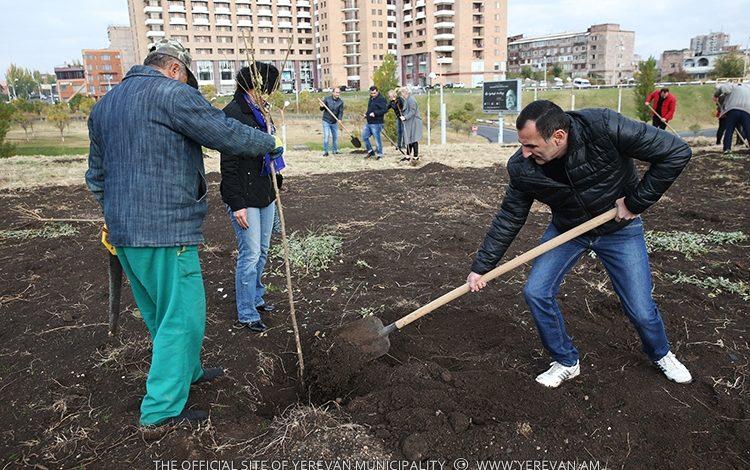Համաքաղաքային ծառատունկի շրջանակում տնկվել է շուրջ 10 000 ծառ
