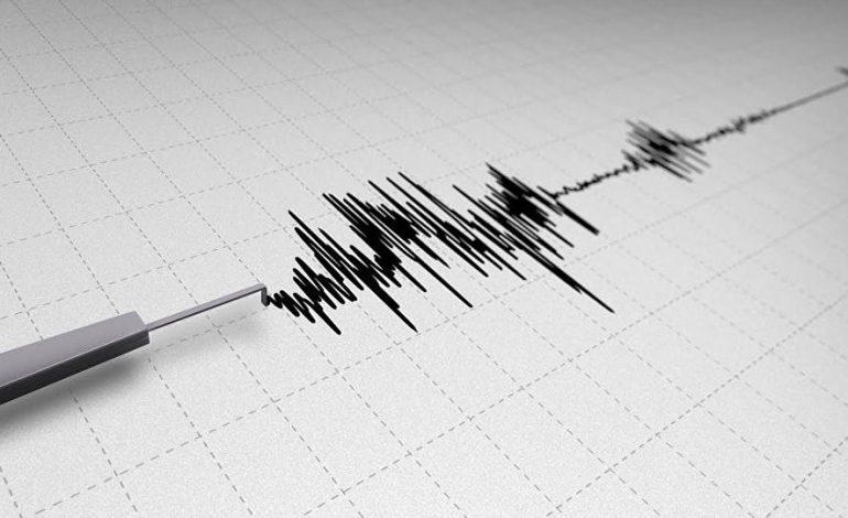 К северо-востоку от села Бавра Ширакской области произошло землетрясение