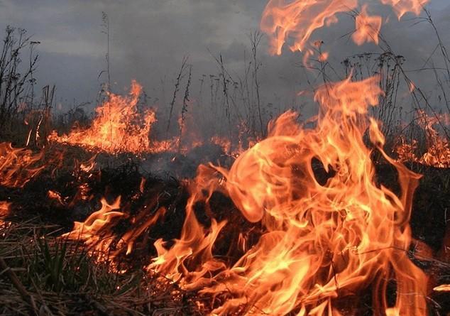 Կրակն Ադրբեջանի կողմում է․ ԱԻՆ-ից մանրամասներ են հայտնում