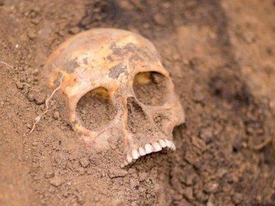 Նոր տեղեկություն՝ դաշտում հայտնաբերված մարդու գանգից
