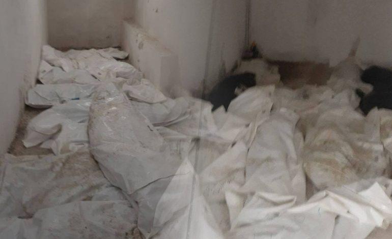 «Դատաբժշկական գիտագործնական կենտրոն» ՊՈԱԿ-ի Աբովյանի մասնաճյուղի վարիչը և 2 աշխատակից ազատվել են աշխատանքից