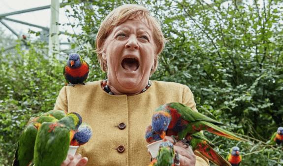 Անգելա Մերկելն այգում թռչուններին կերակրելիս թութակների կողմից «հարձակման է ենթարկվել»